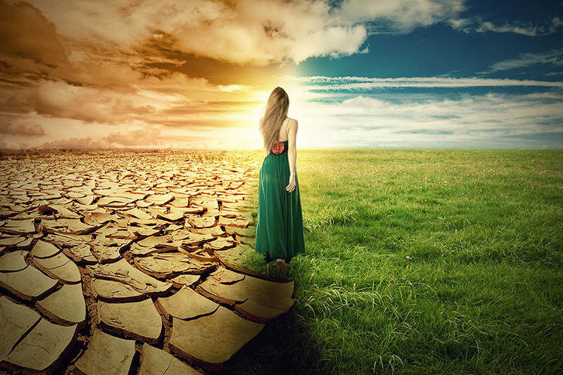 A Climate Change Concept Image. Landscape green grass and drough