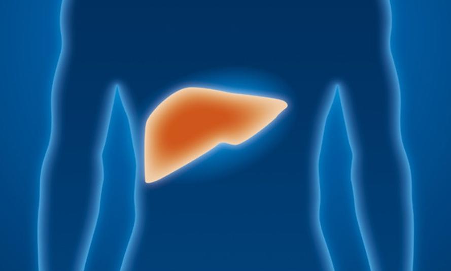 hepatitisq