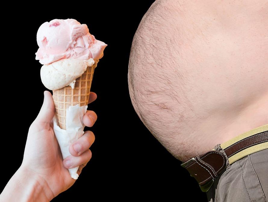 obesity-4214936_960_720